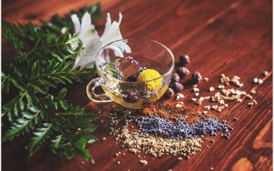 Mastering Healthy and Balanced Terrain with Food as Medicine