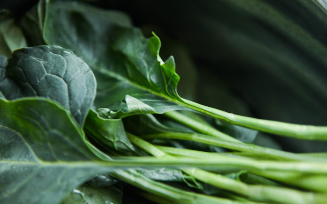 Sautéed Collard Greens with Garlic