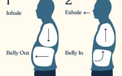 Immunity and Exercise
